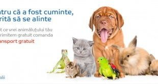 Reduceri si promotii hrana animale companie