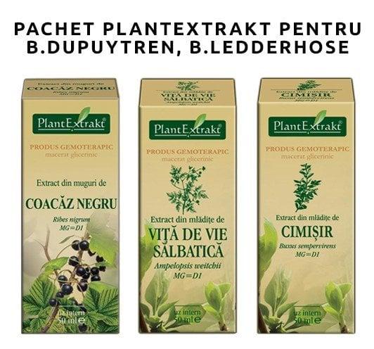 PACHET PLANTEXTRAKT PENTRU B. DUPUYTREN, B. LEDDERHOSE