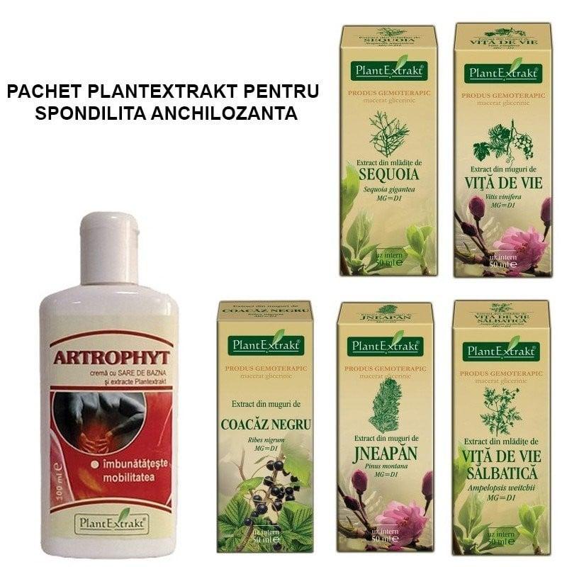 PACHET PLANTEXTRAKT PENTRU SPONDILITA ANCHILOZANTA