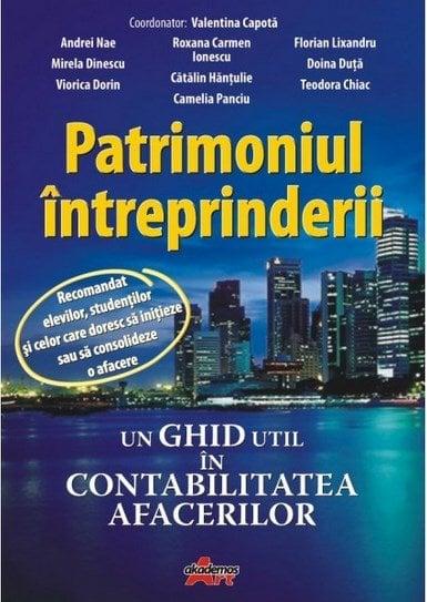 Patrimoniul Intreprinderii - Valentina Capota