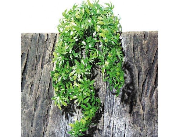 Planta decor JBL TerraPlanta Canabis